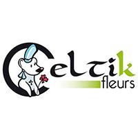 Celtik Fleurs à Lannion